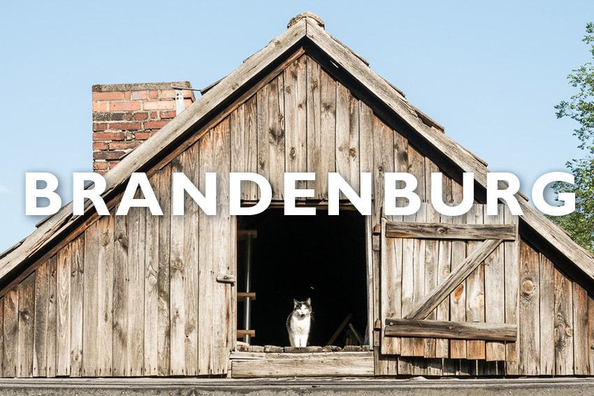 Bild Kategorie Brandenburg