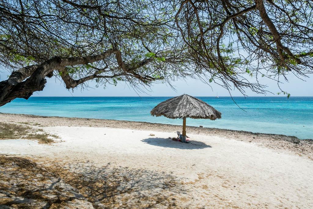 Strand Boca Catalina mit Palmen auf Aruba mit Sonnenschirm