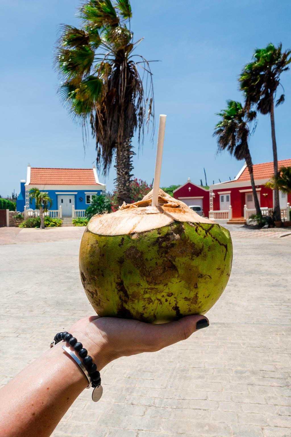 Kokosnuss Aruba