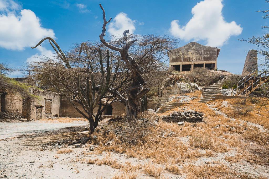 Lost Place Balashi Goldmühle Aruba