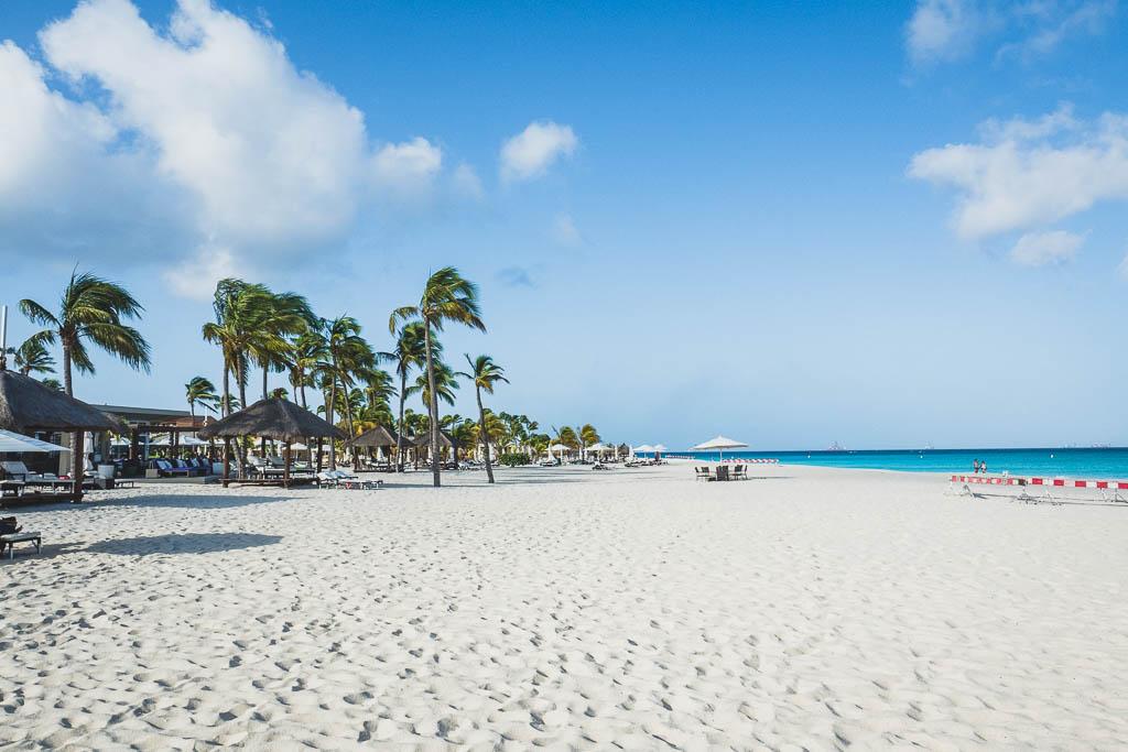 Blick auf den Palm Beach auf Aruba (Strand mit Palmen)