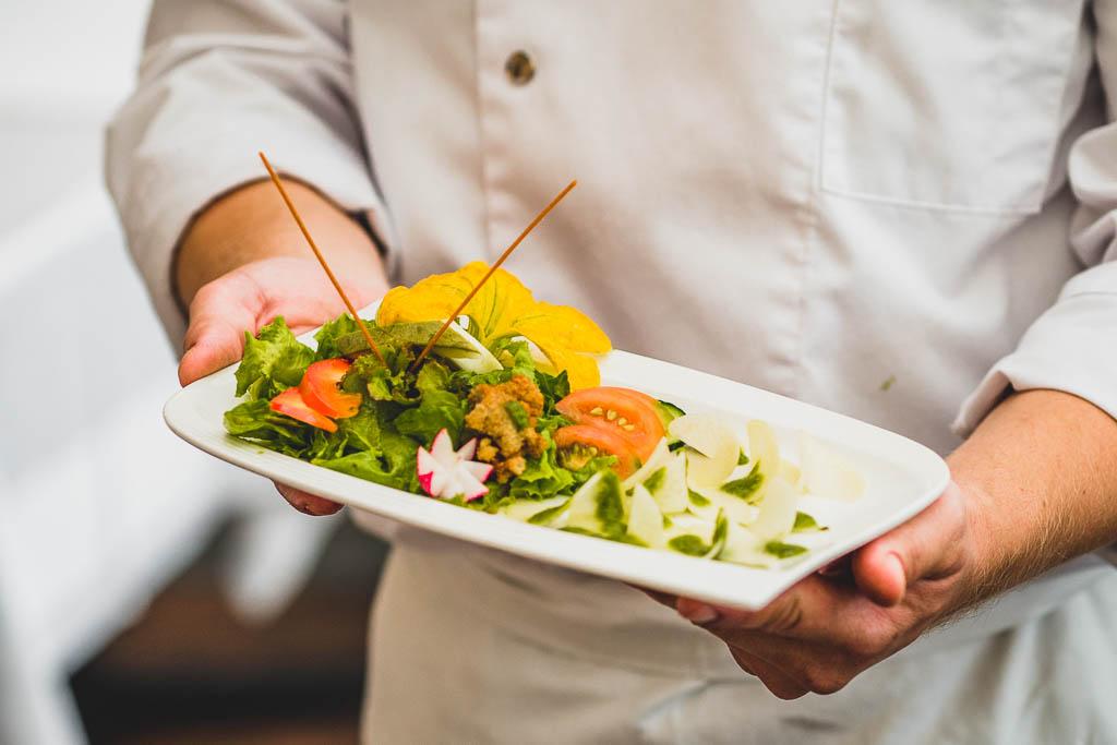 Koch hält Teller mit Schüttelzucchini und Schüttelkohlrabi mit frischem Salat aus dem Garten