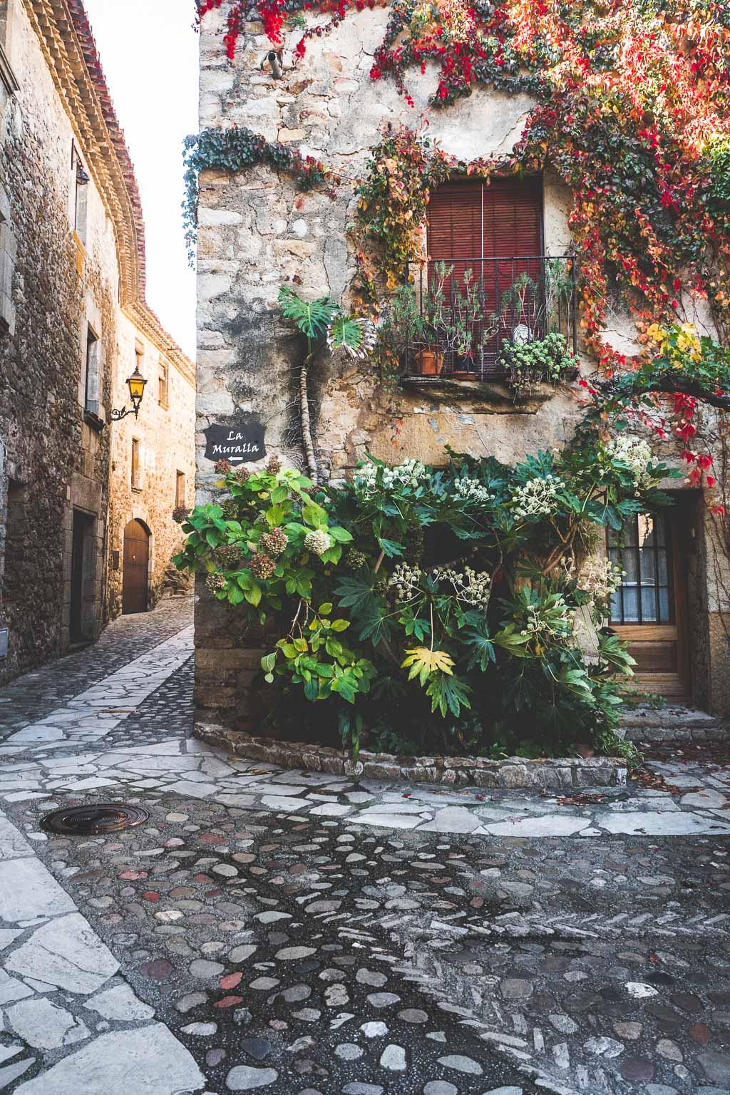 Fassade mit Wein Altstadt Pals Katalonien