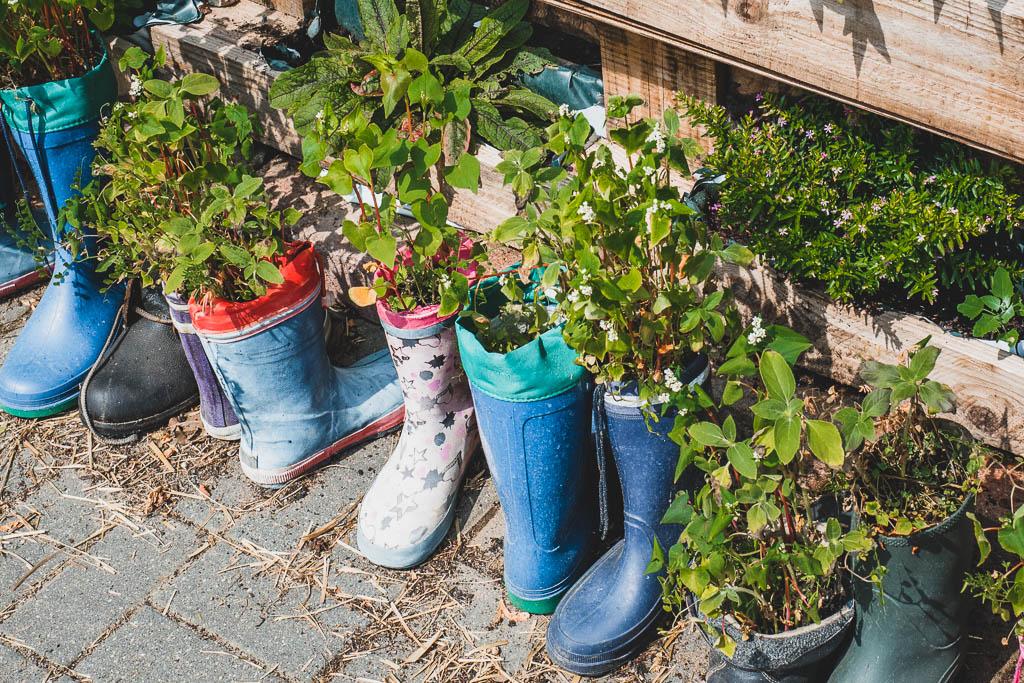Stiefel mit Pflanzen Ökodorf Brodowin