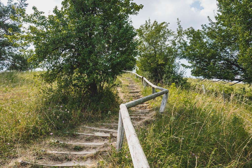 Treppe zum kleinen Rummelsberg Brodowin Brandenburg