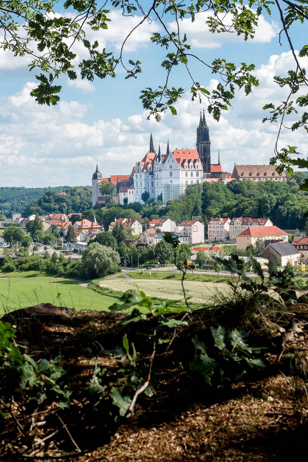 Blick auf die Albrechtsburg Wanderweg von Meißen durch die Weinberge zur Bennokanzel