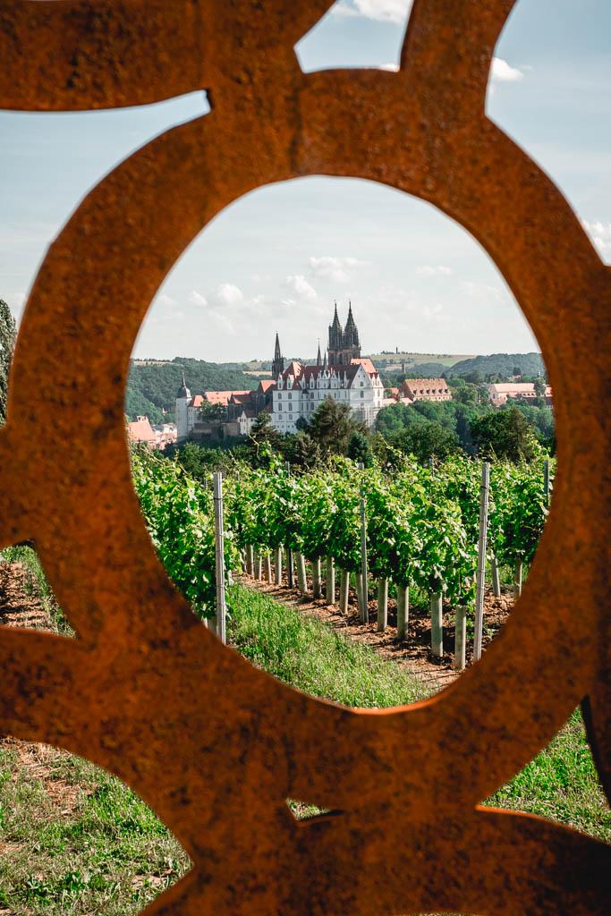 Weinberg die schönste Weitsicht von Sachsen auf die Albrechtsburg Meißen