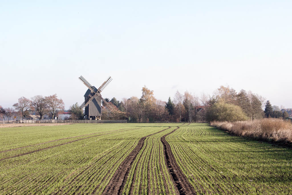Mühle Cammer Brück Ausflug Brandenburg
