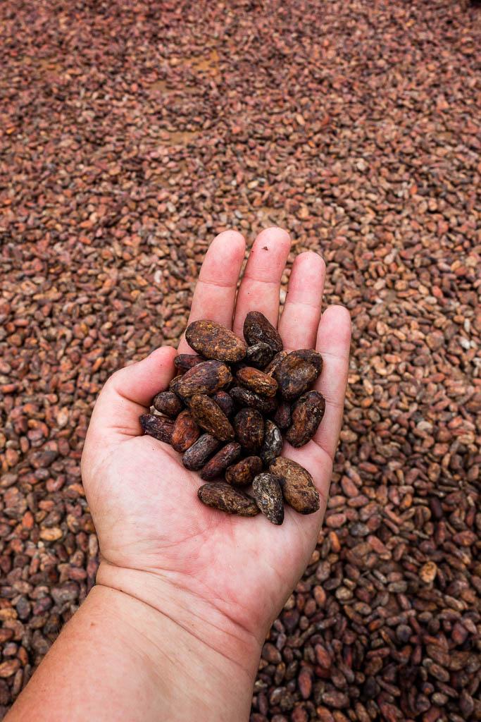 Schokolade Fond Doux Plantation Saint Lucia