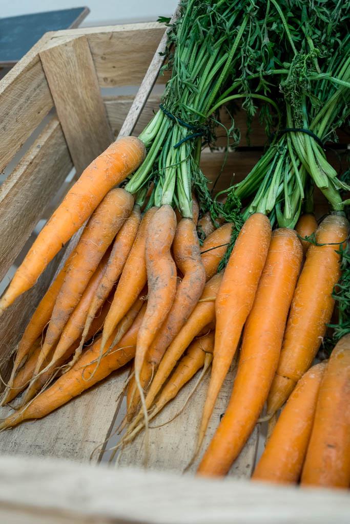 Karotten Hofladen Schmerwitz Brandenburg