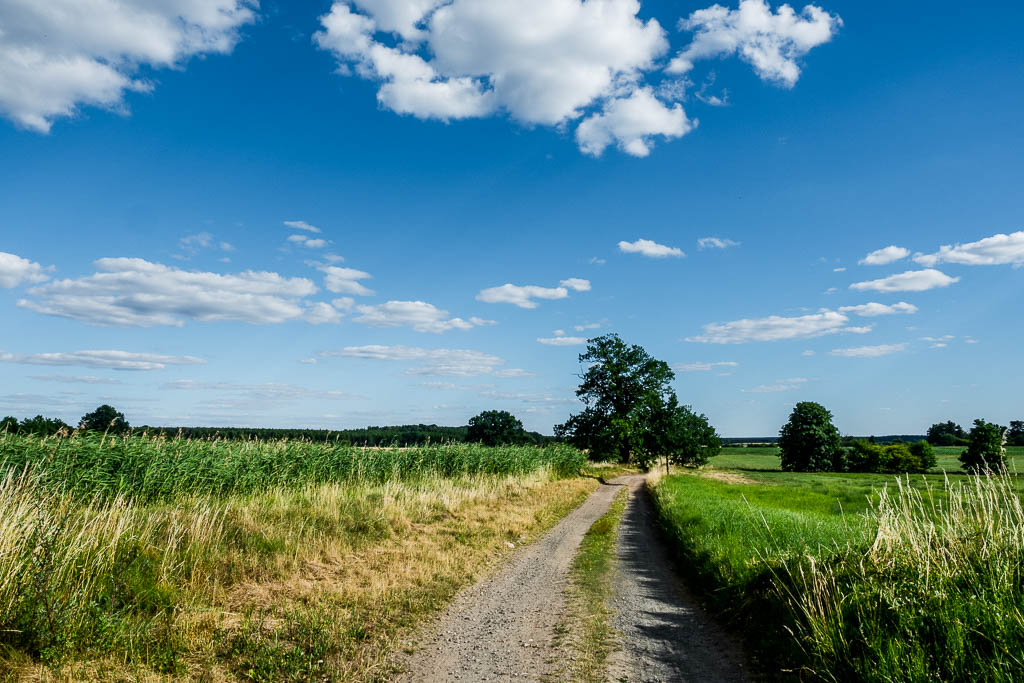 Kunstwanderweg Brandenburg