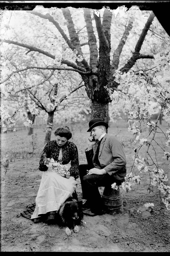 Paar unterm Kirschbaum Foto von Marie Goslich