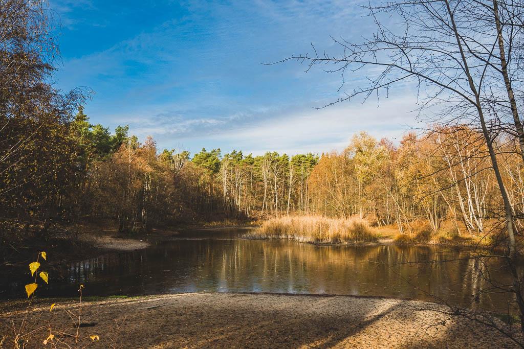Nudower Teich Nuthetal Brandenburg