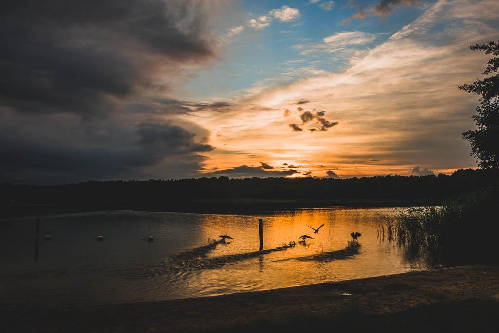 Sonnenuntergang Ruppiner See Brandenburg