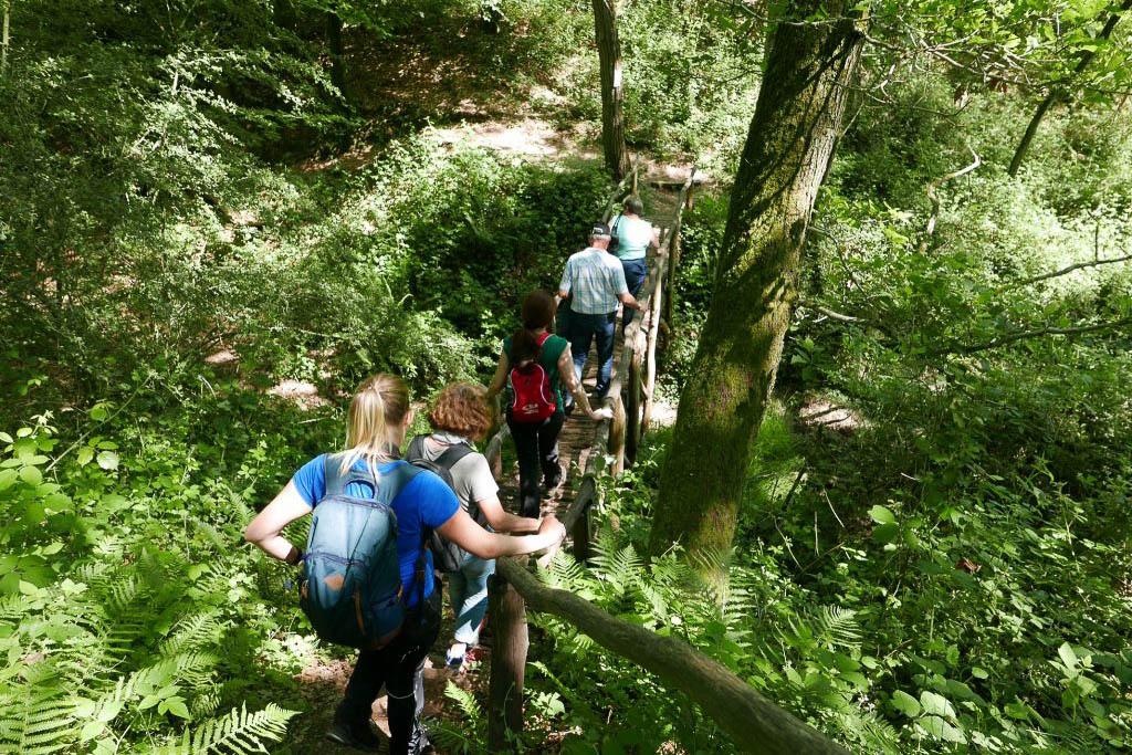 Litermont Gipfeltour im Saarland Sommer Ausflug