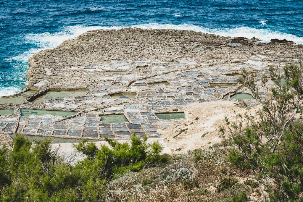 Salinen Gozo