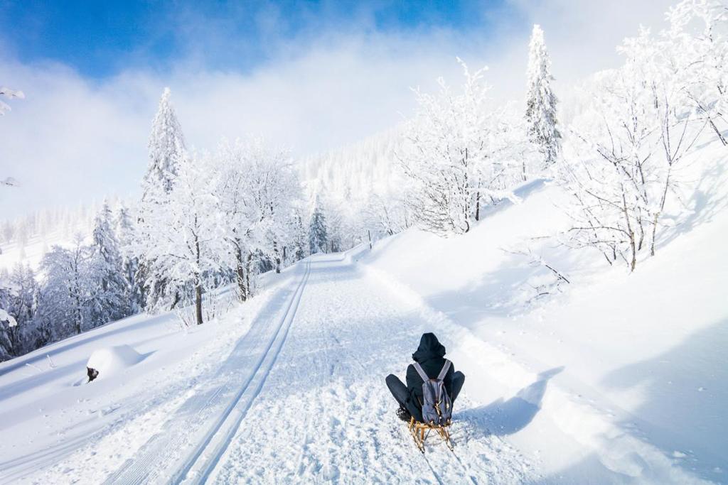 Rodeln auf dem Todtnauer Hüttenweg Feldberg im Winter
