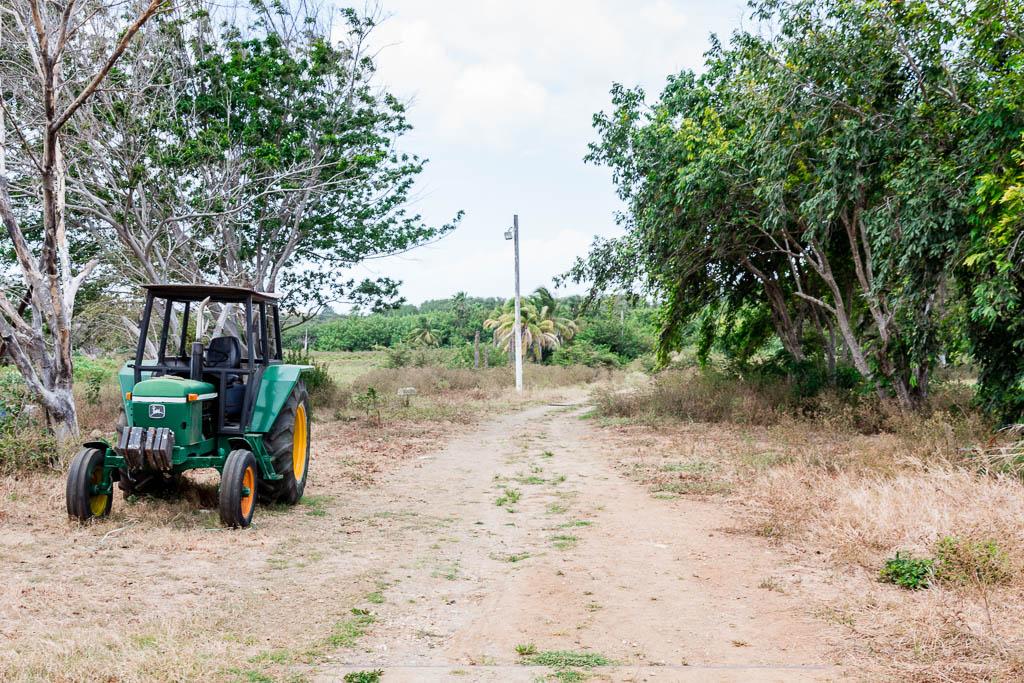 Traktor Curaçao Restaurant Hofi Cas Cora Curaçao