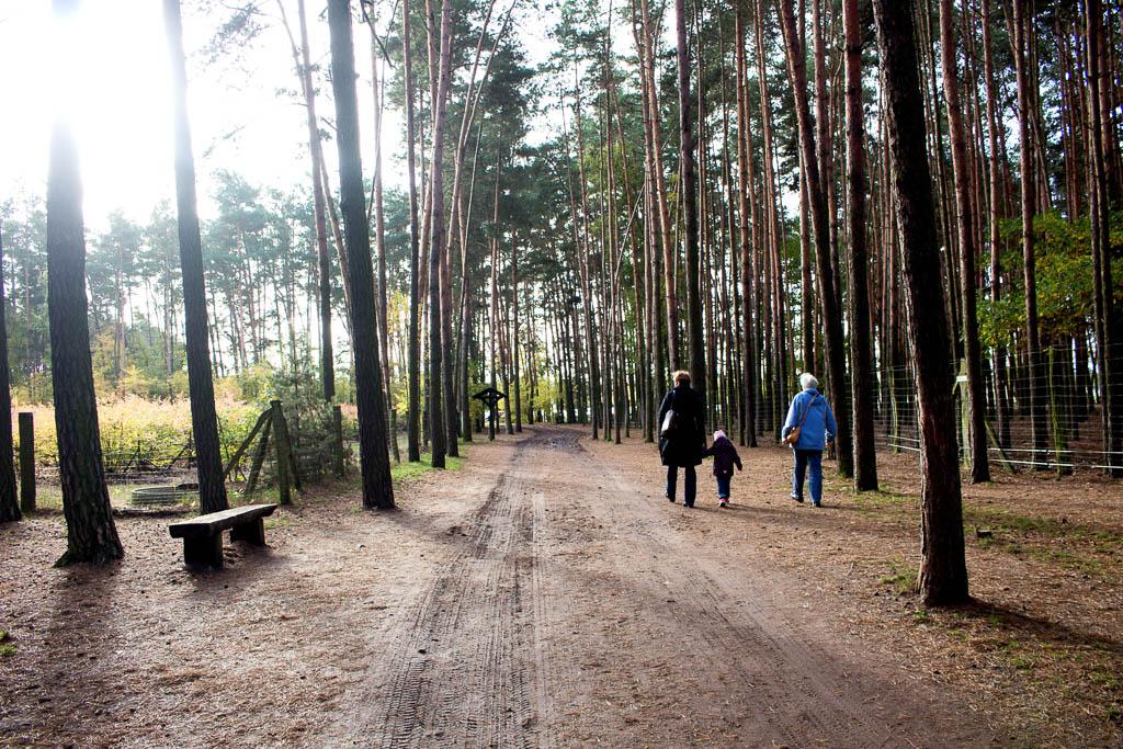 Zwischen Kürbissen und Köstlichkeiten – Halloween auf dem Spargel- und Erlebnishof in Klaistow in Brandenburg