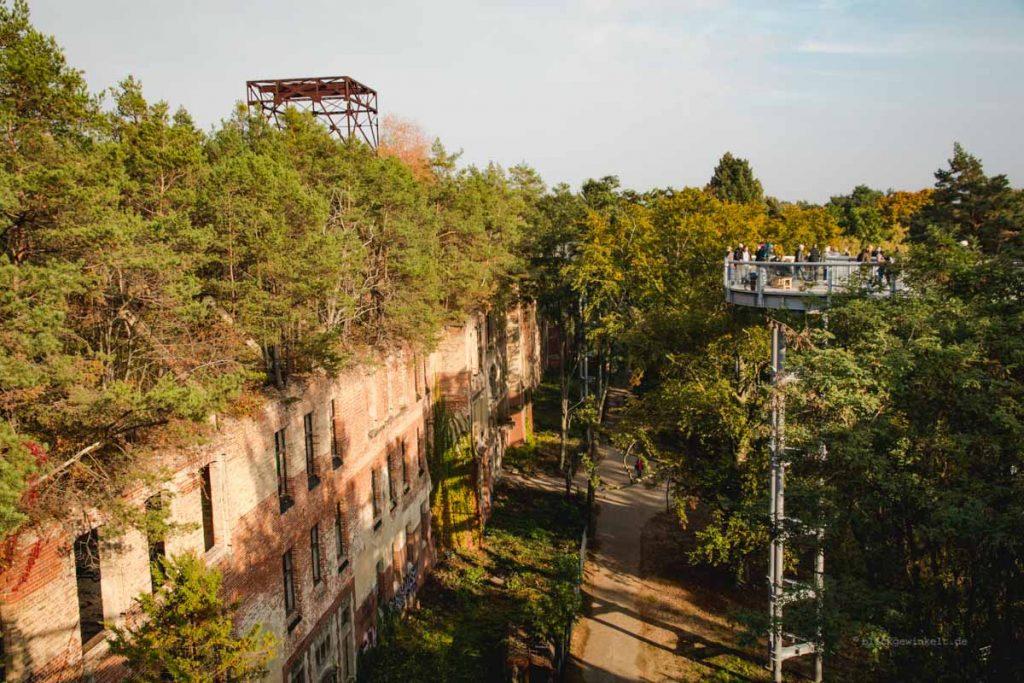 Lost Place Beelitz Heilstätten in Brandenburg - Gelände von Baum und Zeit / Baumkronenpfad