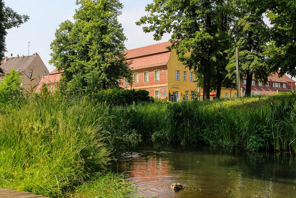 Picknick im Nuthepark Luckenwalde Urlaub in Brandenburg