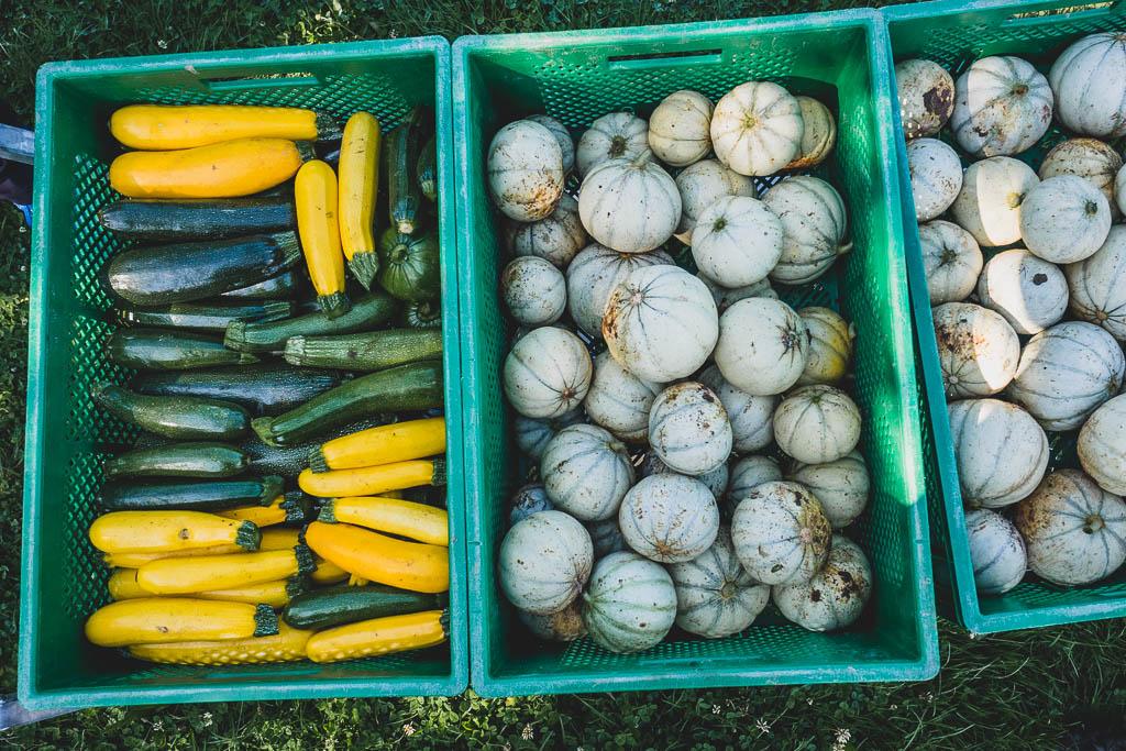 Stadtbauernhof Saarbrücken ein kulinarisches Wochenende im Saarland