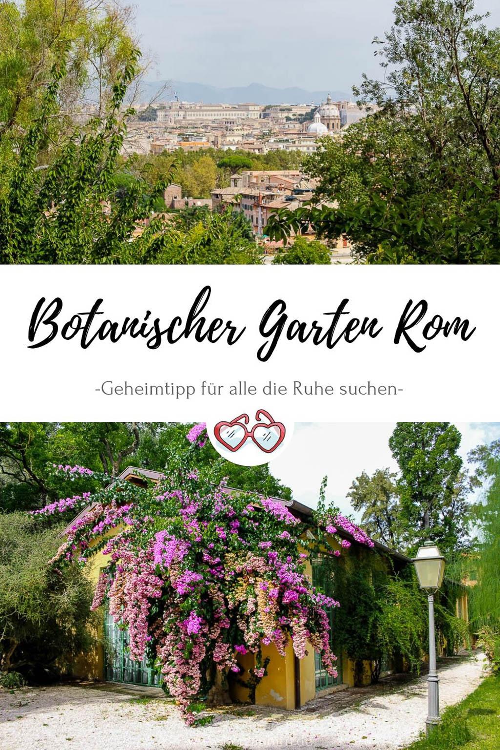 Botanischer Garten Rom Pinterest Grafik