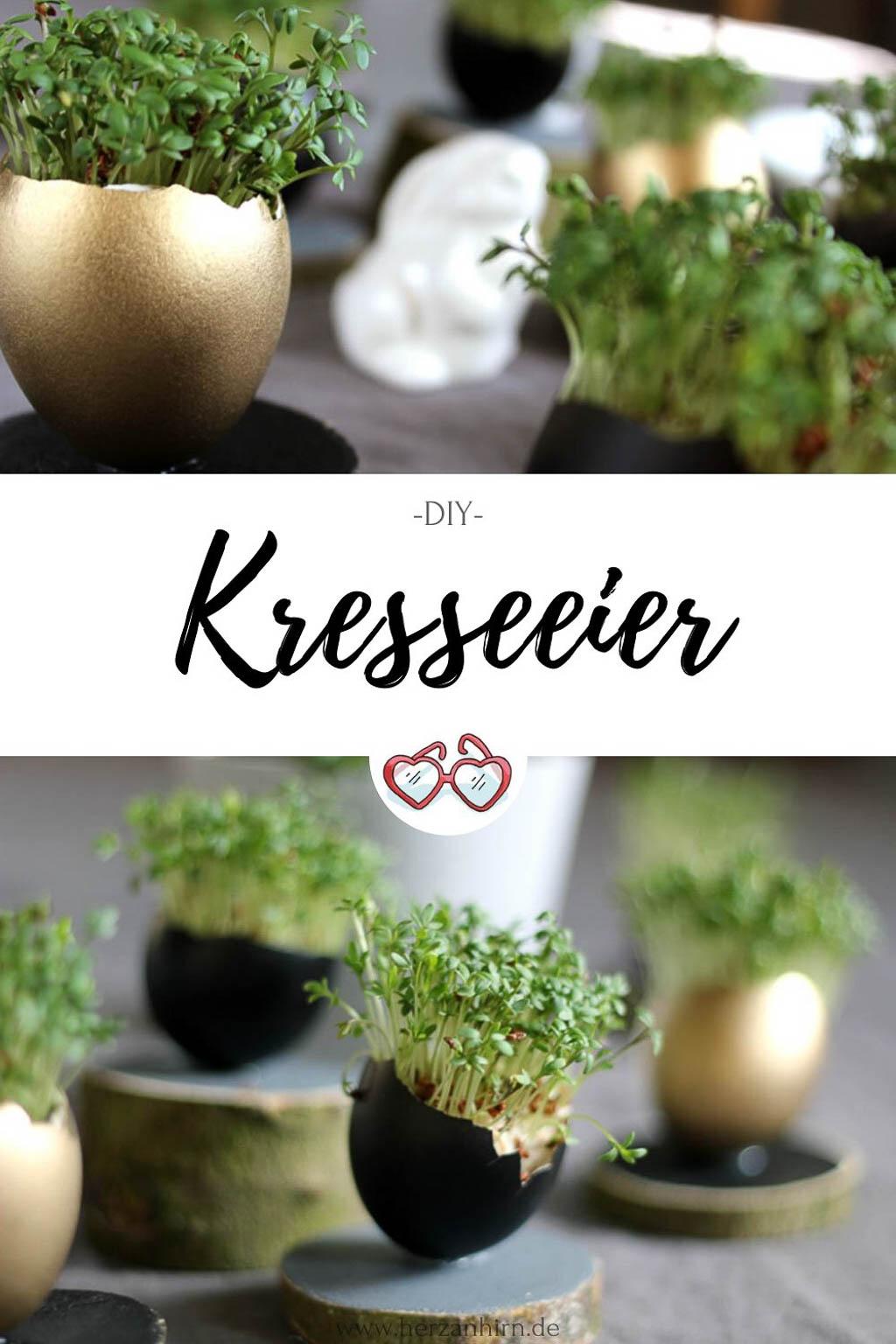 Kresseeier Pinterest Grafik