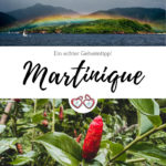 Pinterest Grafik Martinique