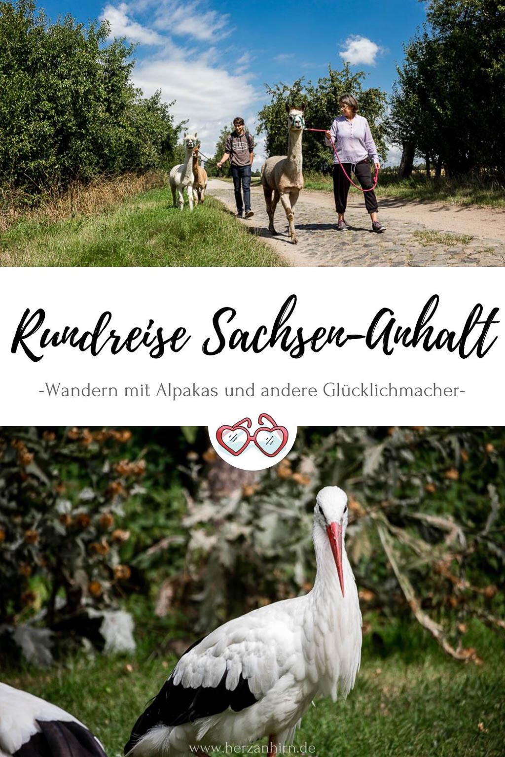 Rundreise Sachsen-Anhalt Pinterest Grafik