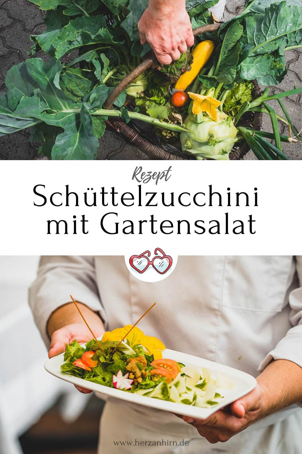 Pinterest Grafik Schüttelzucchini Rezept