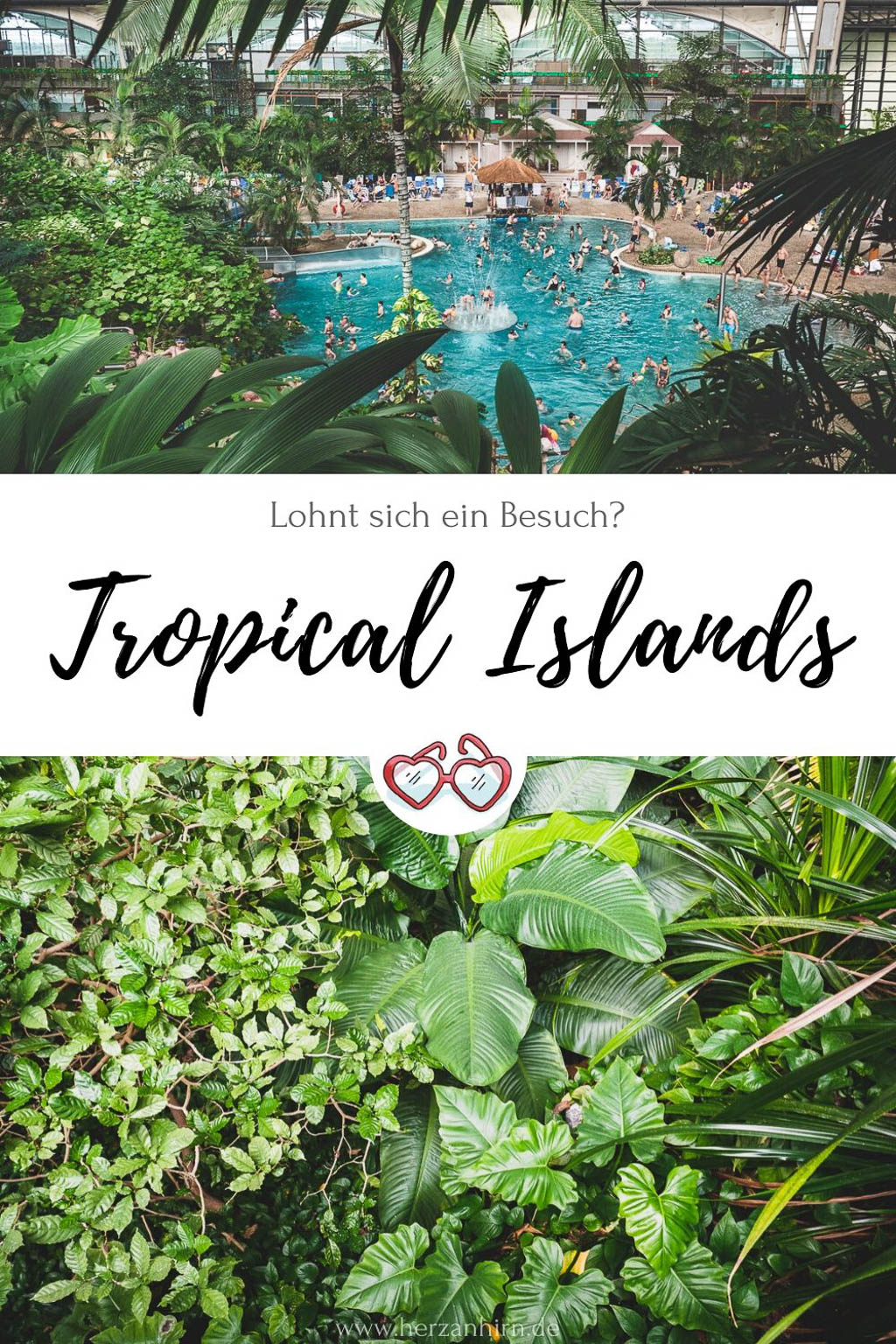 Pinterest Grafik Tropical Islands