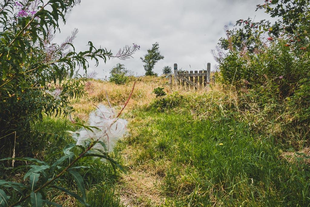 Weg zum Aussichtspunkt Agri Bavnehøj im Nationalpark Mols Bjerge Urlaub in Djursland: Ausflugsziele und Sehenswürdigkeiten rund um Ebeltoft Dänemark