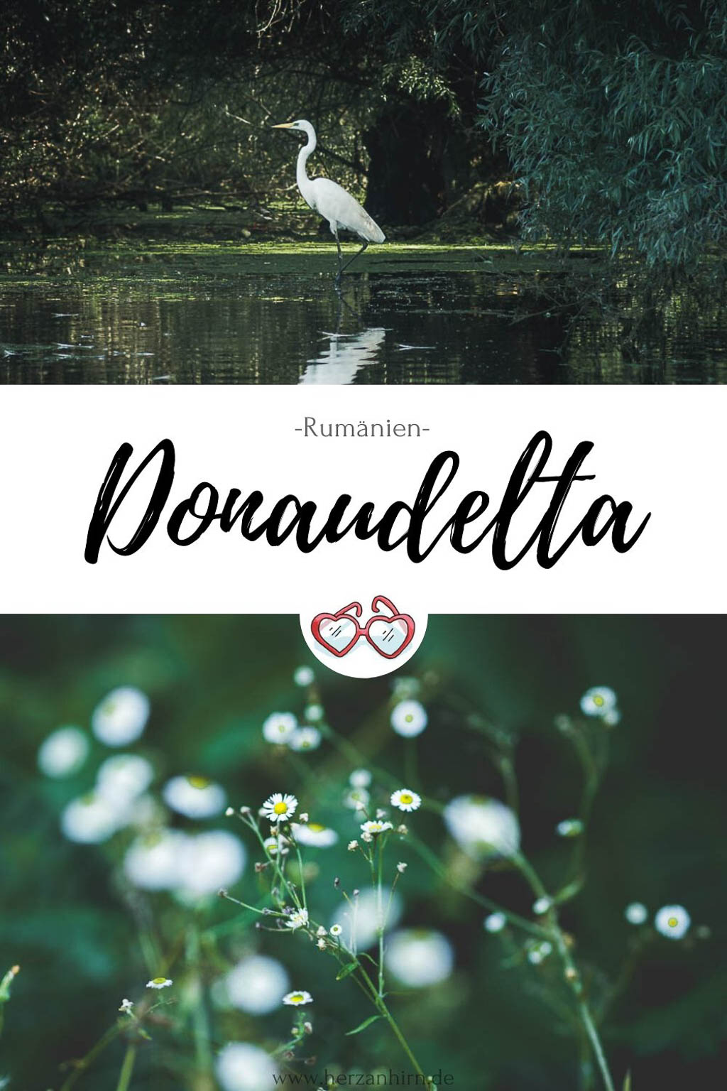 Pinterest Grafik Donaudelta