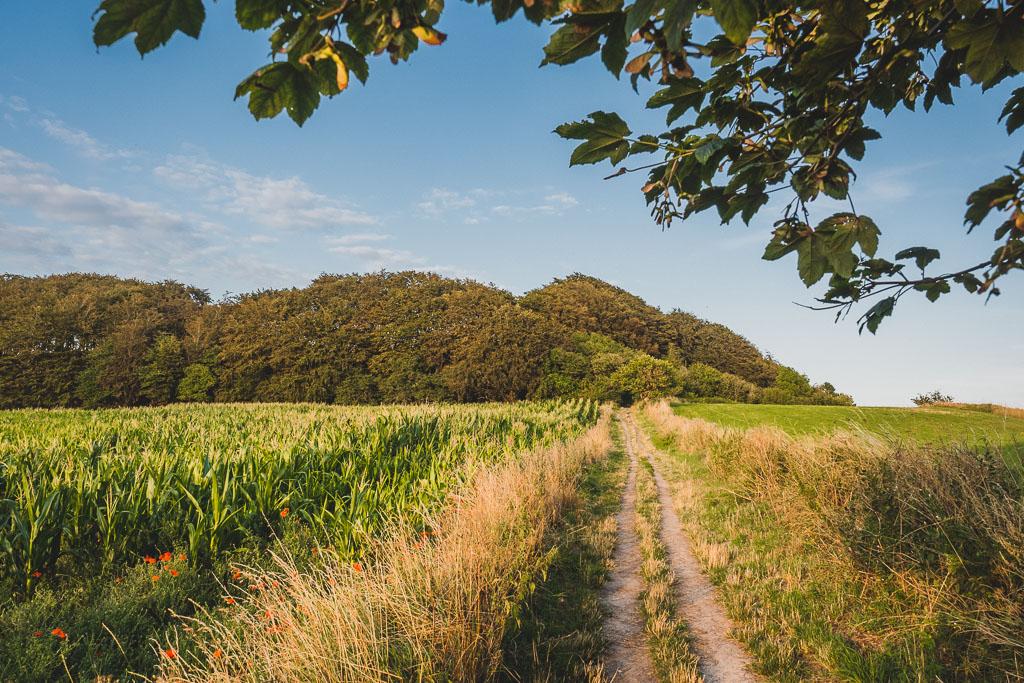 Aussichtspunkt Jernhatten Urlaub in Djursland: Ausflugsziele und Sehenswürdigkeiten rund um Ebeltoft Dänemark