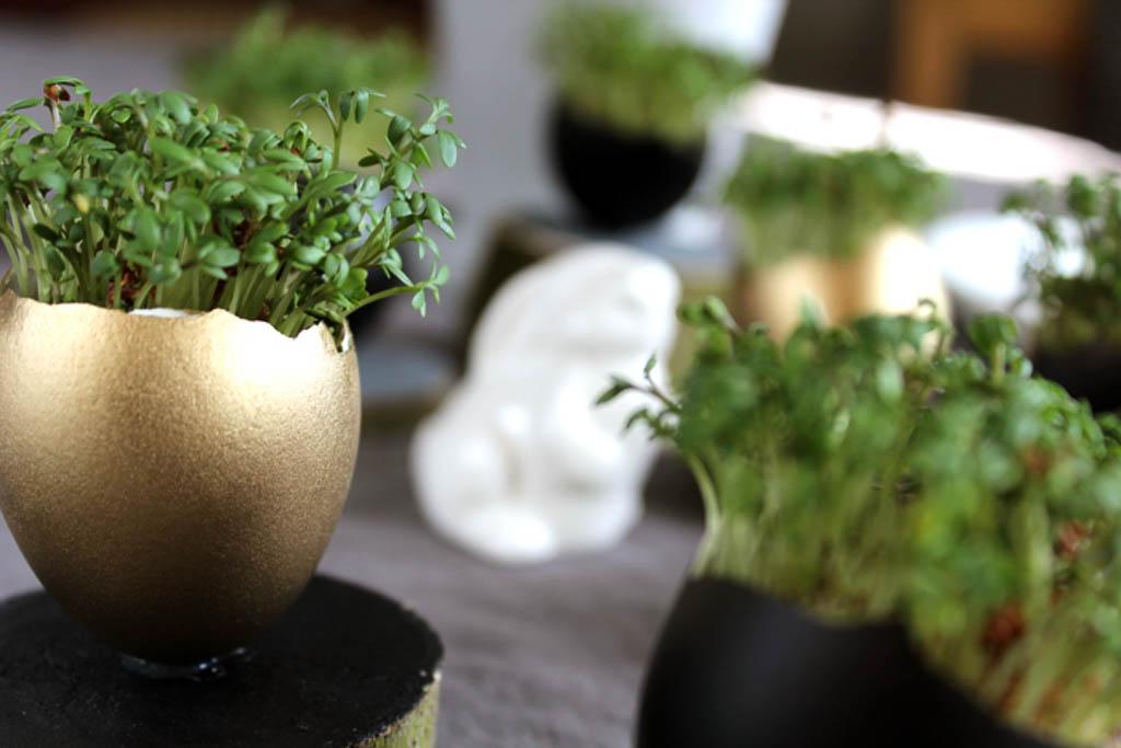 Kresseeier basteln: Dekoration für Ostern