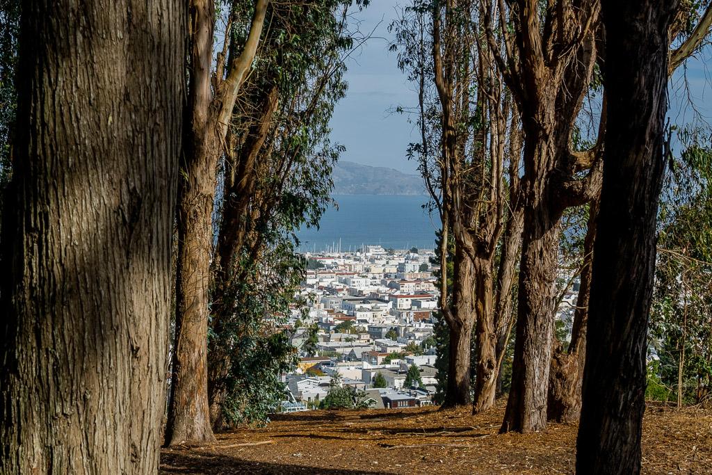 Wandern im Nationalpark Presidio San Francisco in 3 Tagen aktiv entdecken – Reisetipps, Highlights und besondere Aktivitäten