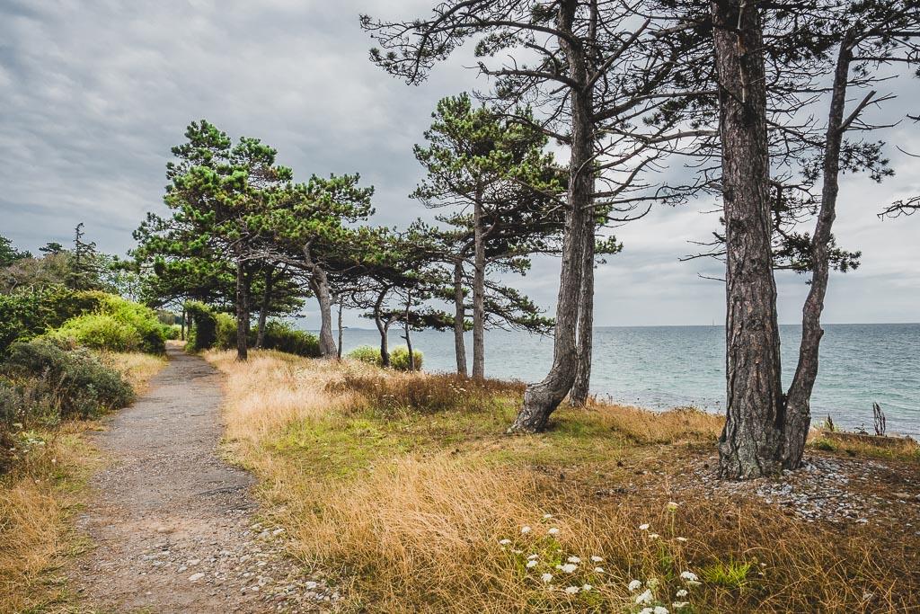 Strand am Sletterhage Leuchtturm in Dänemark Urlaub in Djursland: Ausflugsziele und Sehenswürdigkeiten rund um Ebeltoft Dänemark