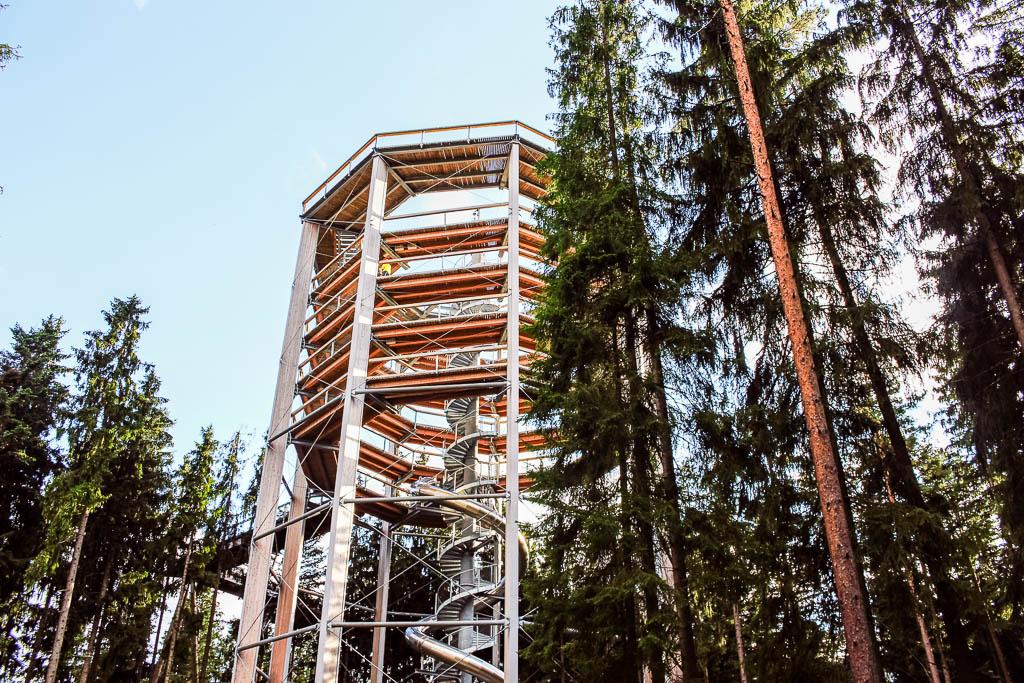 der Baumwipfelpfad Besondere Aktivitäten und Abenteuer am Lipno Stausee in Tschechien