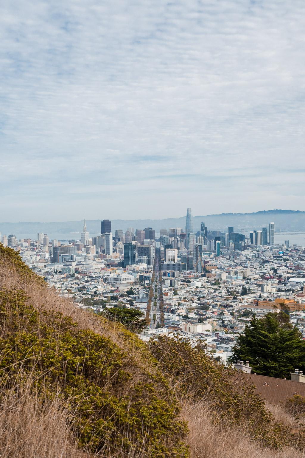 Aussicht vom Christmas Tree Point auf den Twin Peaks Urban Hike – wandern in San Francisco San Francisco in 3 Tagen aktiv entdecken – Reisetipps, Highlights und besondere Aktivitäten