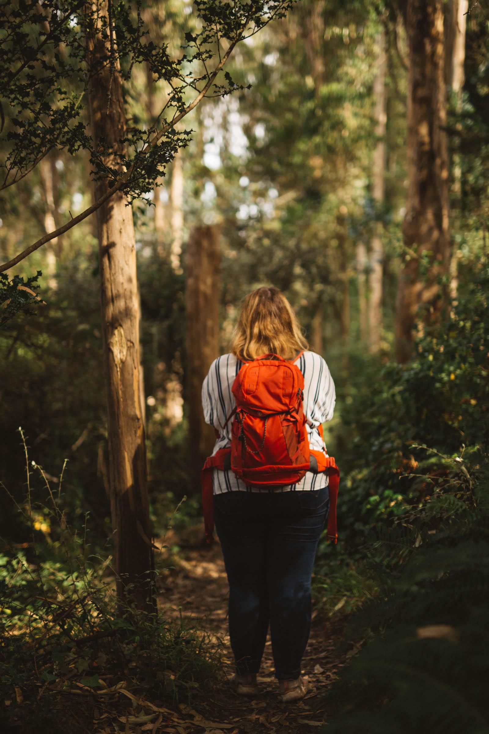Urban Hike – wandern in San Francisco San Francisco in 3 Tagen aktiv entdecken – Reisetipps, Highlights und besondere Aktivitäten