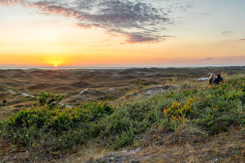 Dünen mit Blick aufs Meer Texel Foto Justin Sinner