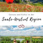Saale-Unstrut Region Pinterest Grafik