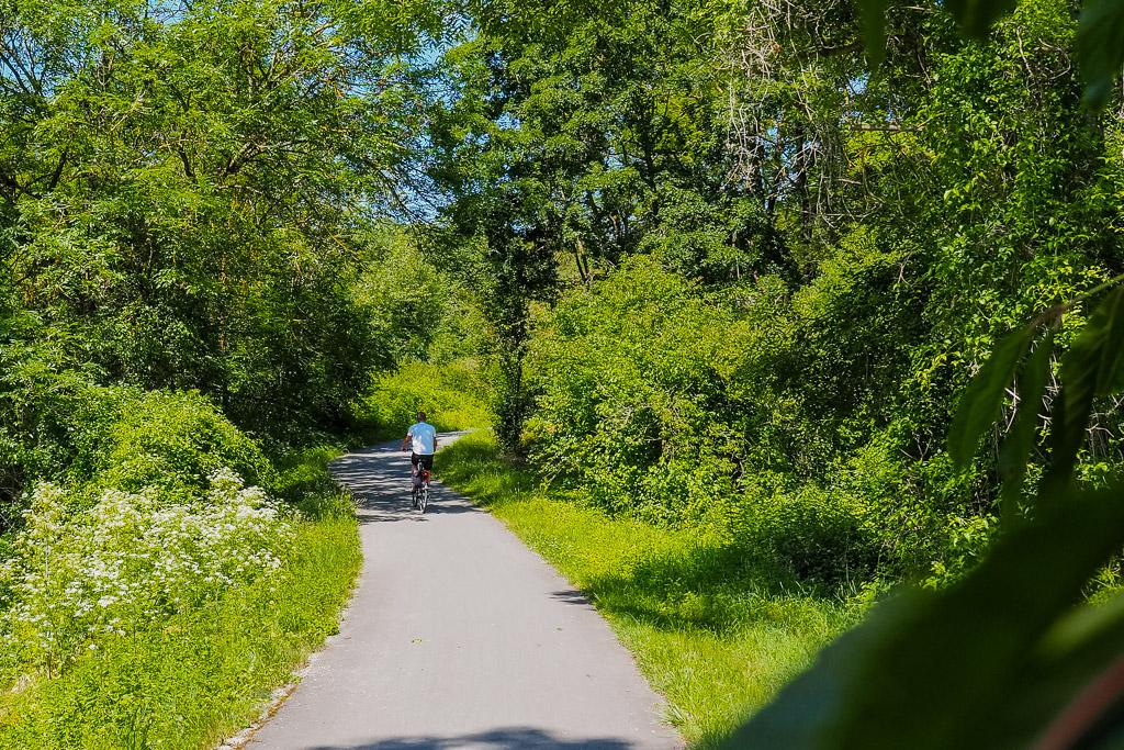 Saale-Unstrut Region Saale-Radweg