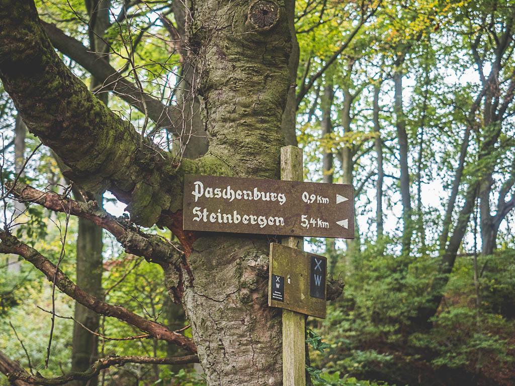 Weserbergland Sehenswürdigkeit Paschenburg Wanderung