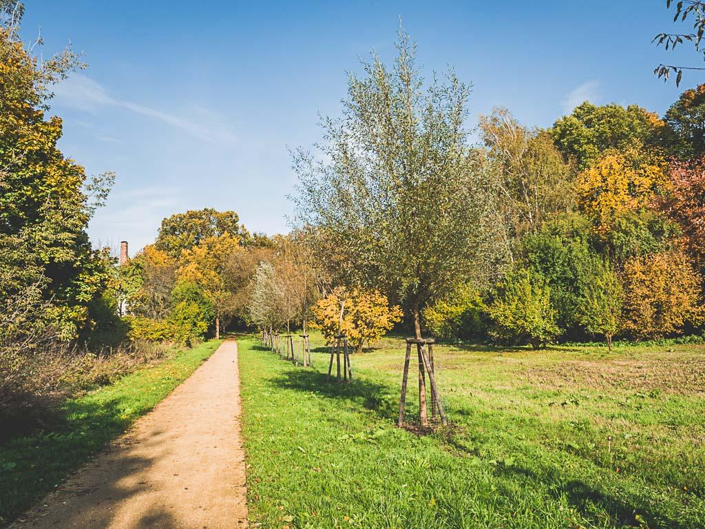 Park Grüne Welle Gemeinde Großbeeren in Brandenburg