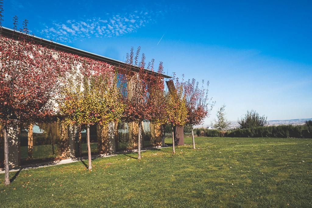 Olivenfarm Artajo in der Navarra in Spanien
