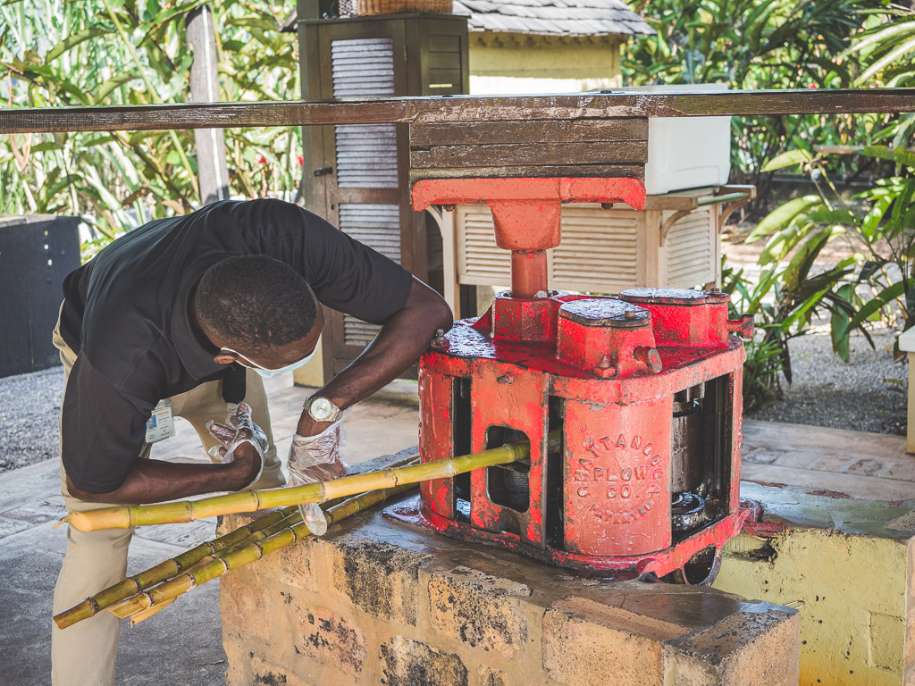 AppletonEstate Sehenswürdigkeit Jamaika